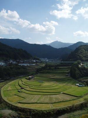 日本人の米作り魂だ。